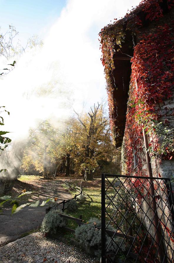 esterno cancello autunno castagni