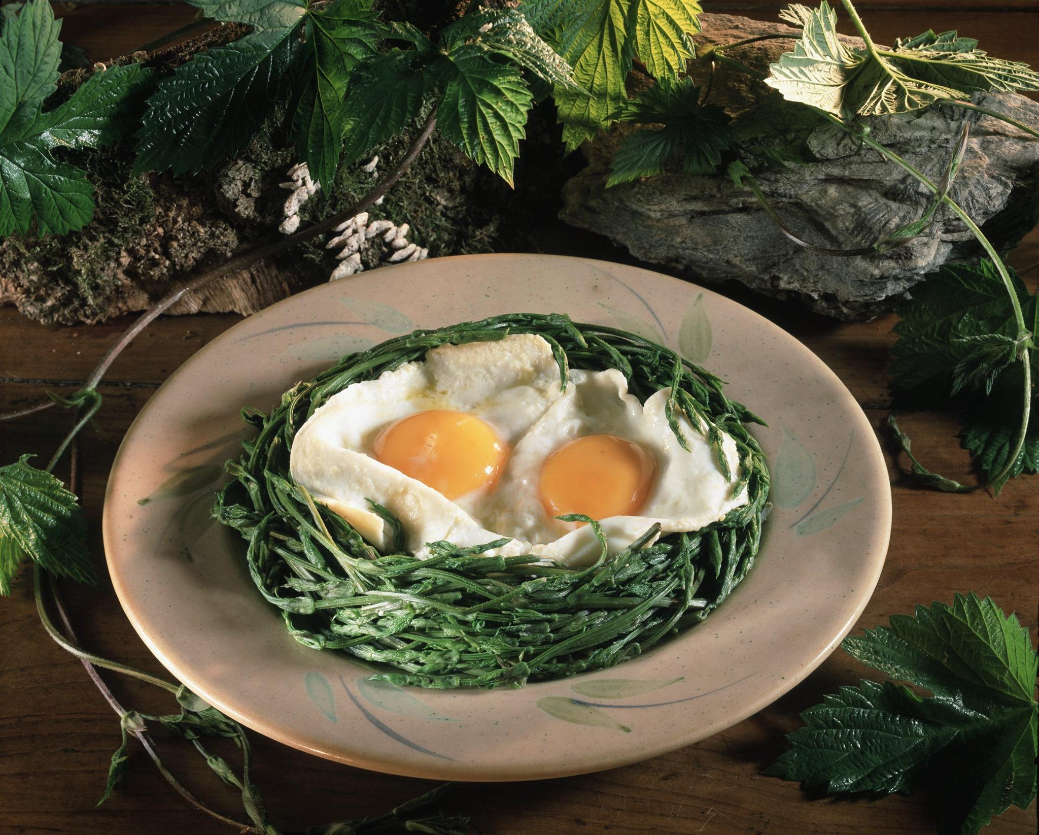 germogli di luppolo e uova