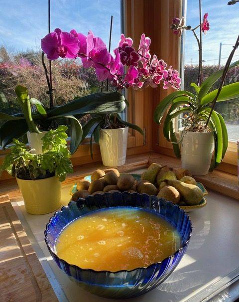 marmellata di arance succo